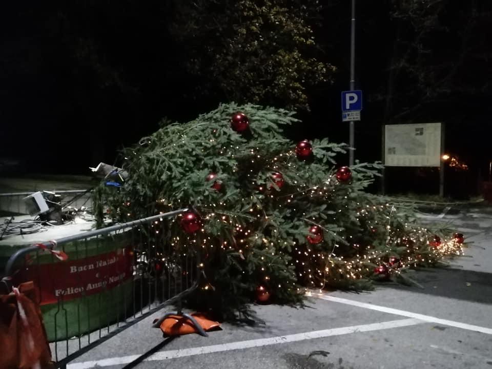 Immagine per Vandali in azione nella notte a Sistiana, tagliato in due l'albero di Natale
