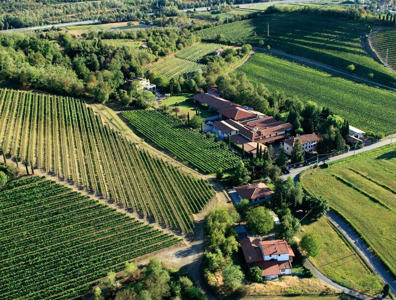 Immagine per Le cantine Jermann di Farra d'Isonzo passano al colosso del vino di Firenze Antinori