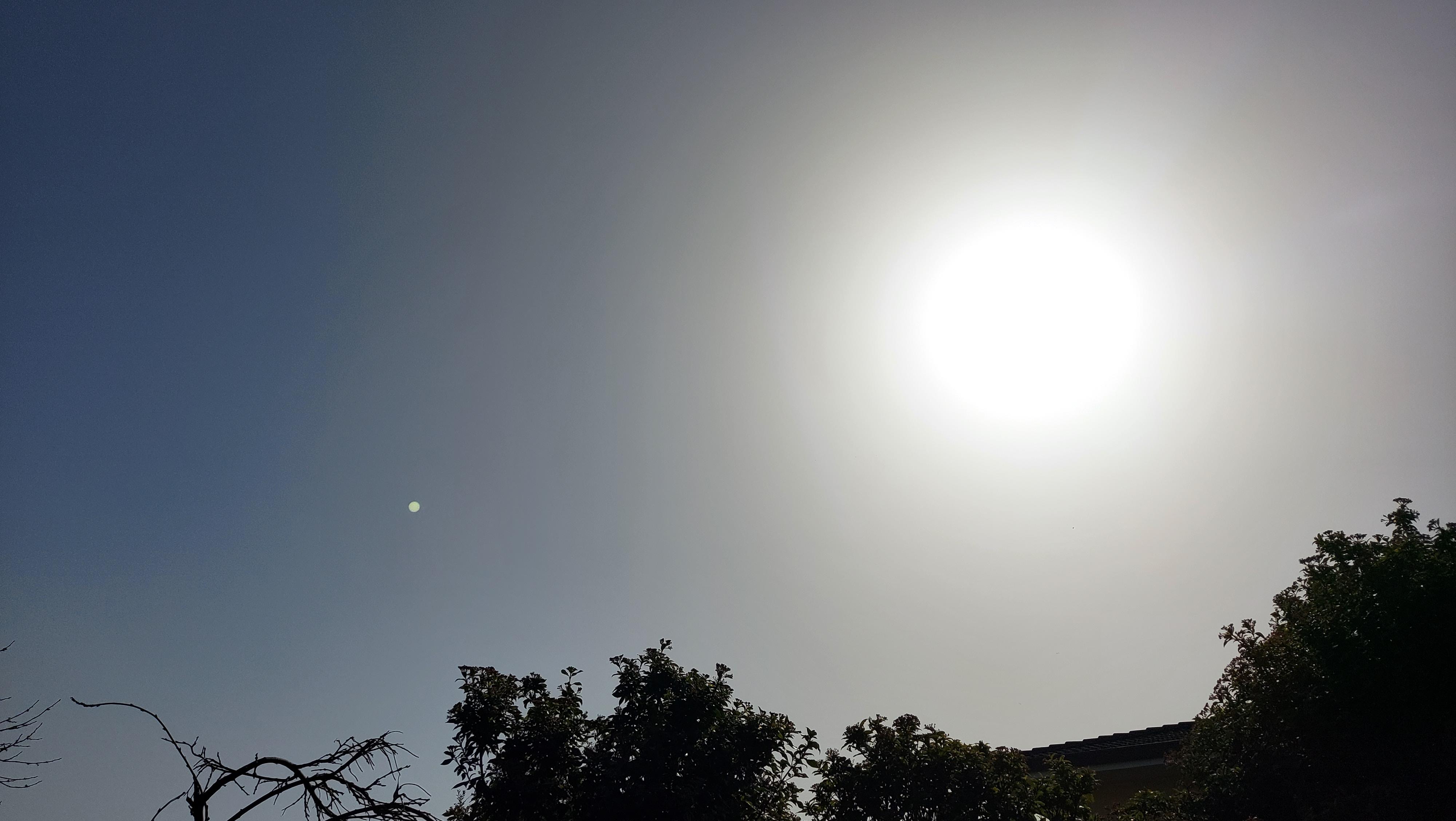 Immagine per Continua la fase decisamente mite sul Goriziano, bel tempo con clima atipico per il periodo