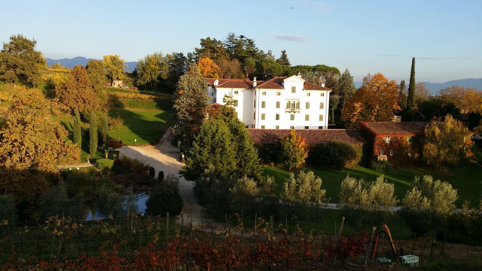 Immagine per Mozart illumina Mossa, la grande musica ritorna a Villa Codelli