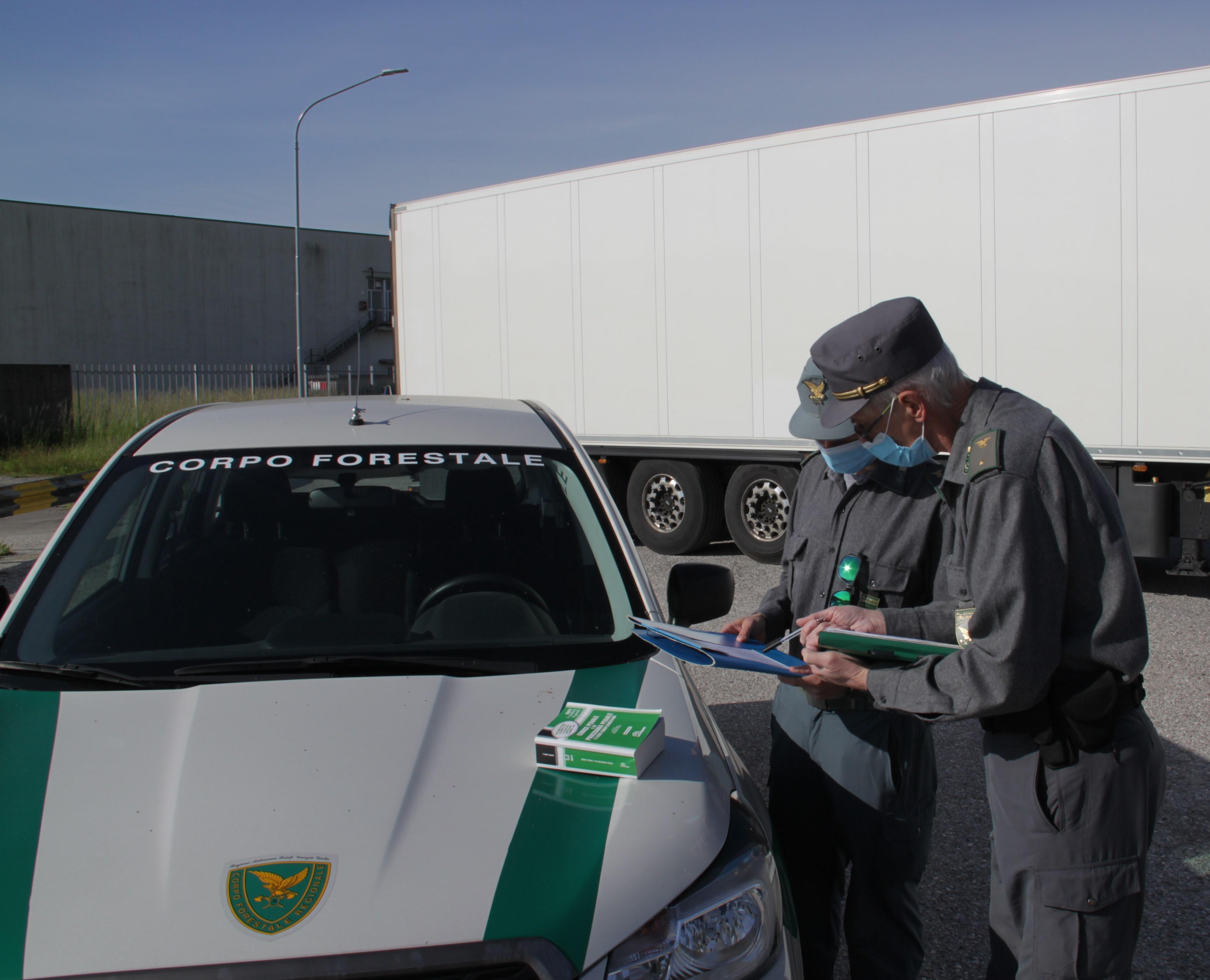 Immagine per Rifiuti senza autorizzazioni tra Cervignano e Bassa friulana, nei guai tre imprenditori