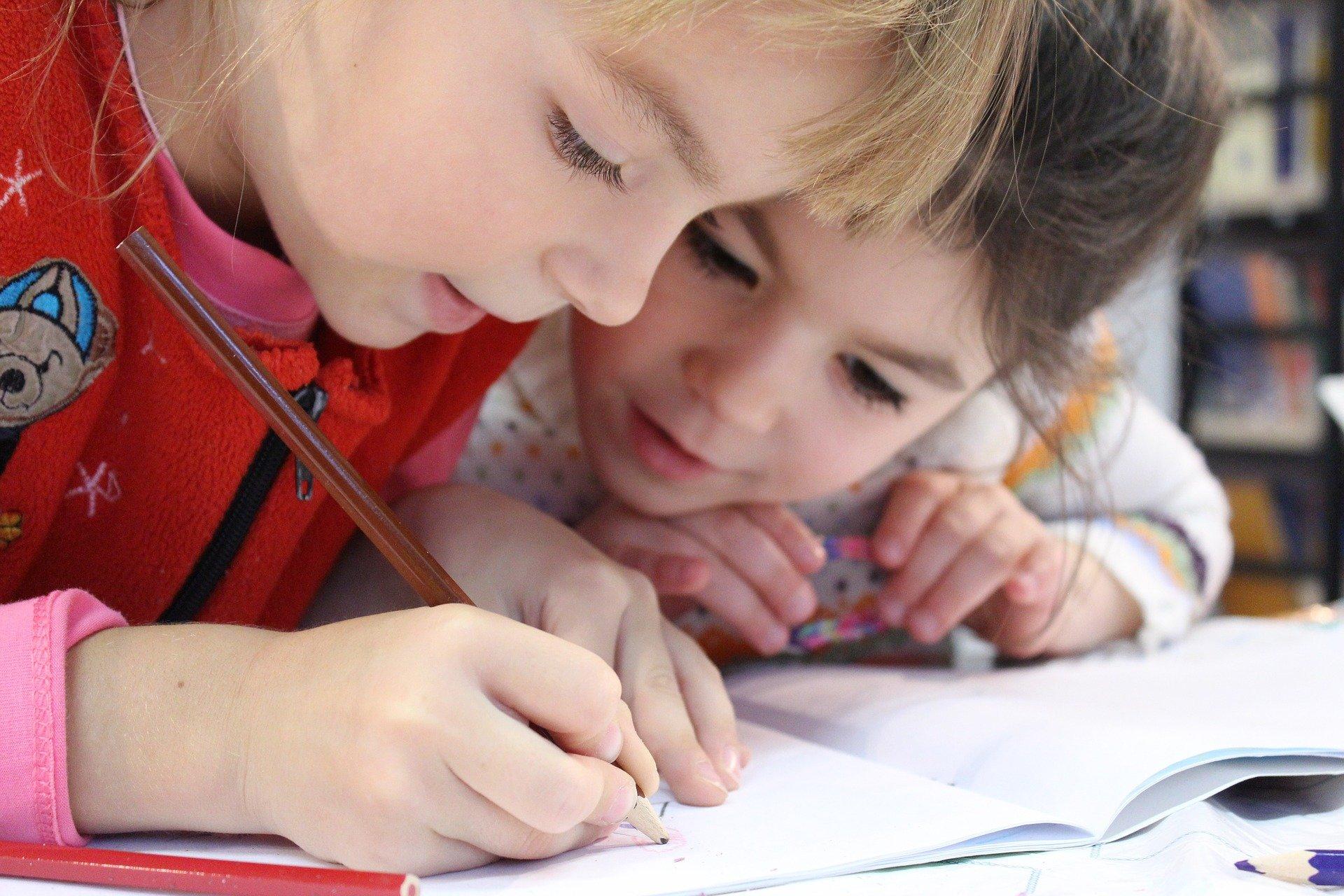 Immagine per L'associazione Interetnica lancia l'allarme sulle scuole a Monfalcone e chiede nuove soluzioni