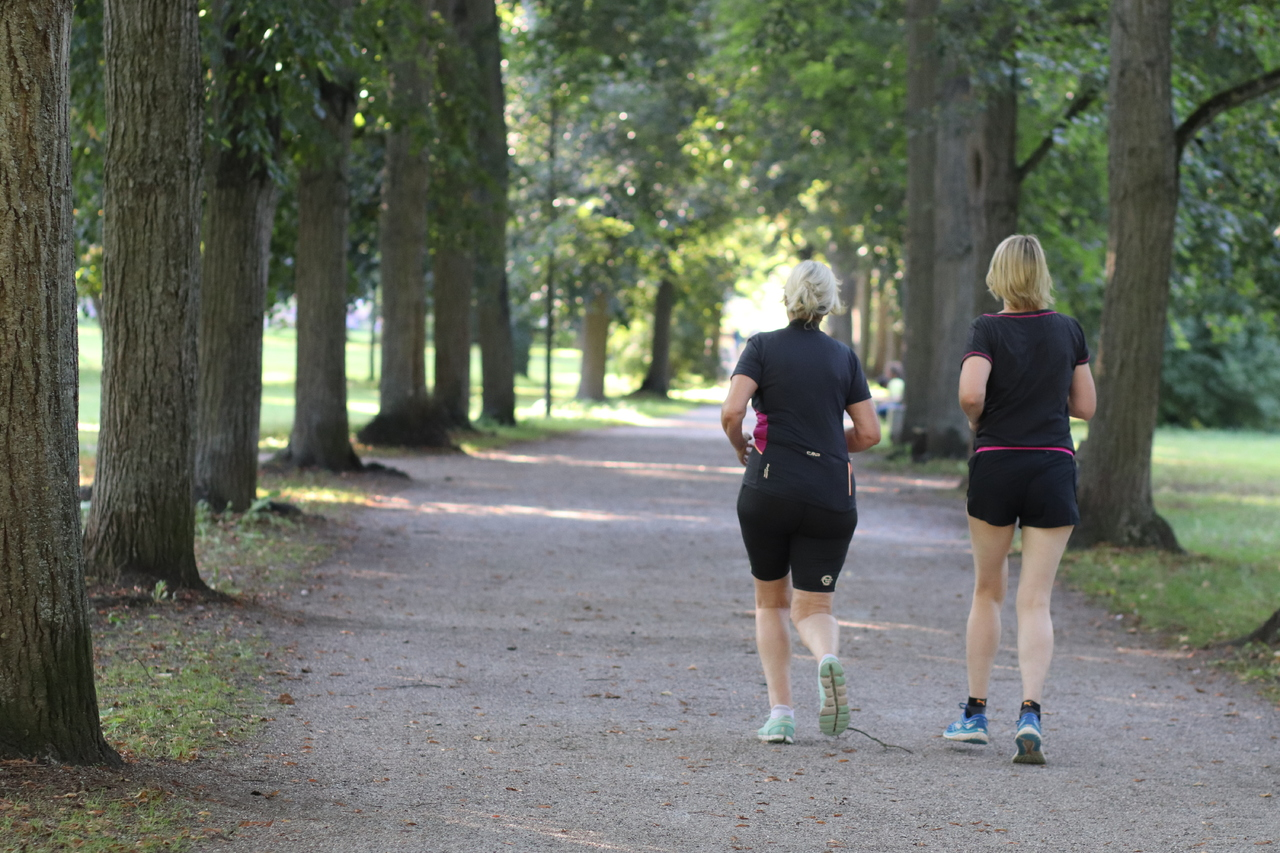 Copertina per Sport senza età nei parchi di Gorizia, più salute per 2000 anziani